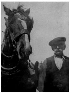 A photograph of a farmer with horse (undated)