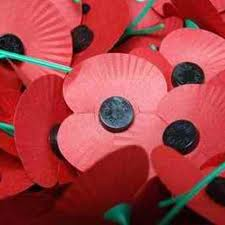 Photograph of Remembrance Day Poppies